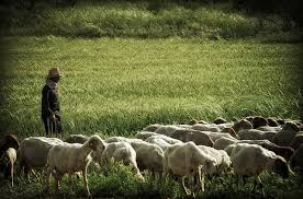When the Lord is my Shepherd I shall not want for protection