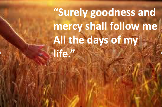When the Lord is my Shepherd I shall not want for goodness and mercy