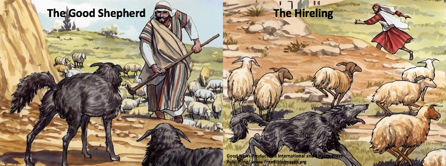 How can I grow closer to the Good Shepherd? Part 1