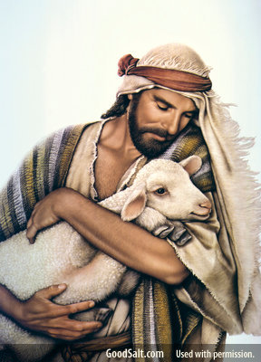 How can I grow closer to the Good Shepherd? Part 2