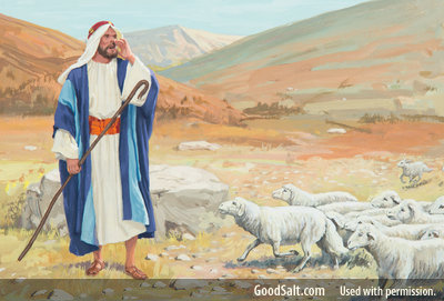 How can I trust the Lord Jesus as the True Shepherd? Part 2