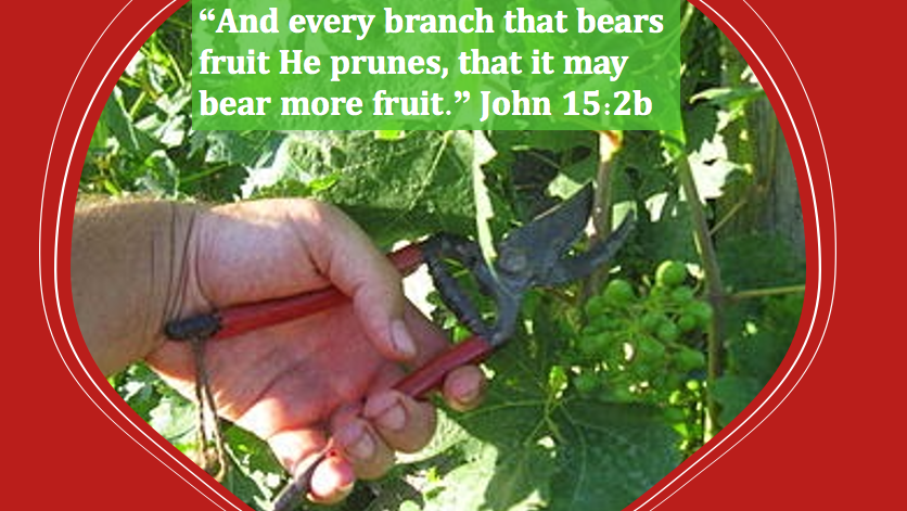 How can we become more fruitful for the Lord? Part 3
